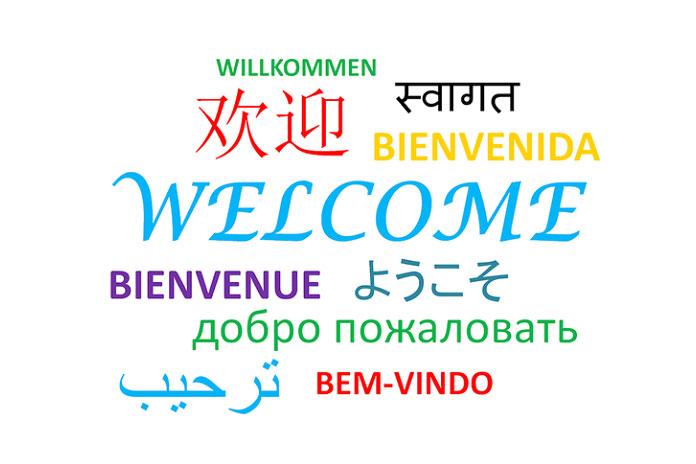 Совместимость языков
