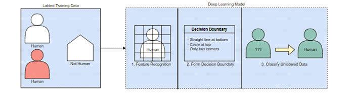 Как модели глубокого обучения учатся классифицировать изображения