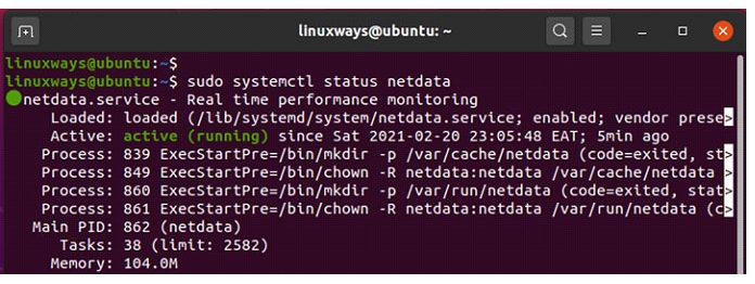 Вывод подтверждает, что Netdata