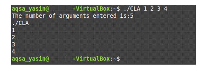 После выполнения нашего кода Cвы сначала увидите количество аргументов
