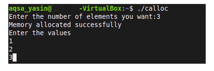 Затем код попросит нас ввести эти значения