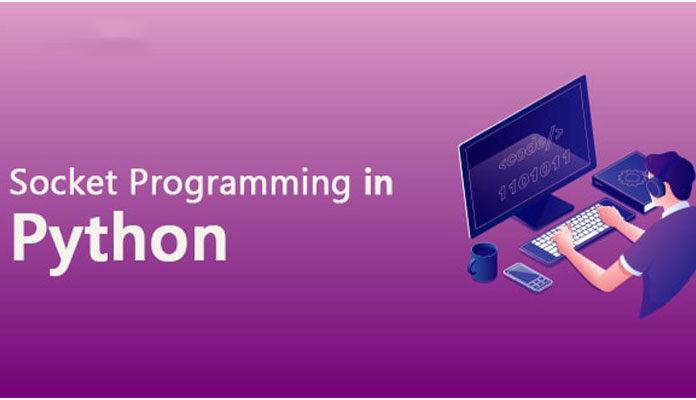 Программирование сокетов Python
