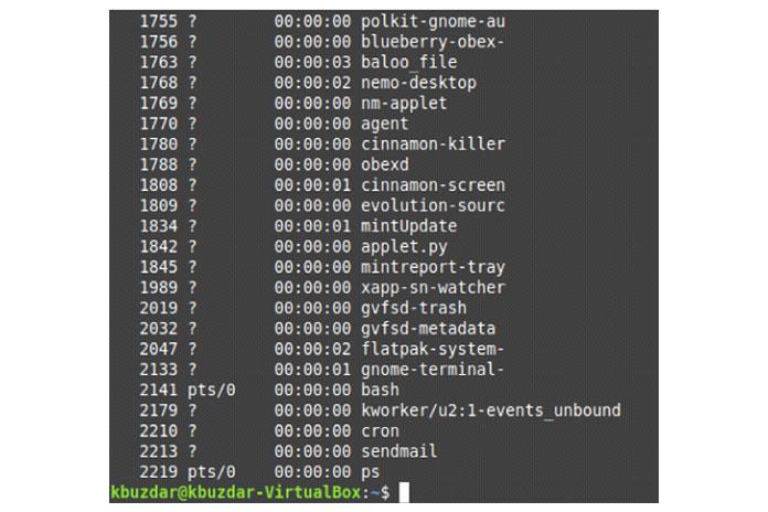 Все запущенные внастоящее время процессы внашей системе Linux показаны наизображении ниже