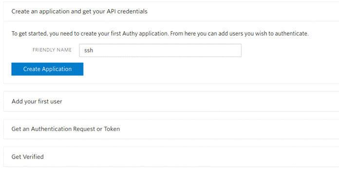 Выберите имя для API инажмите Create Application