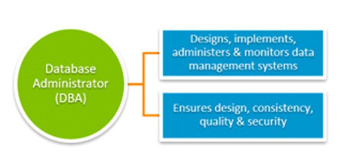 Вэтом контексте роль администратора базы данных (DBA)