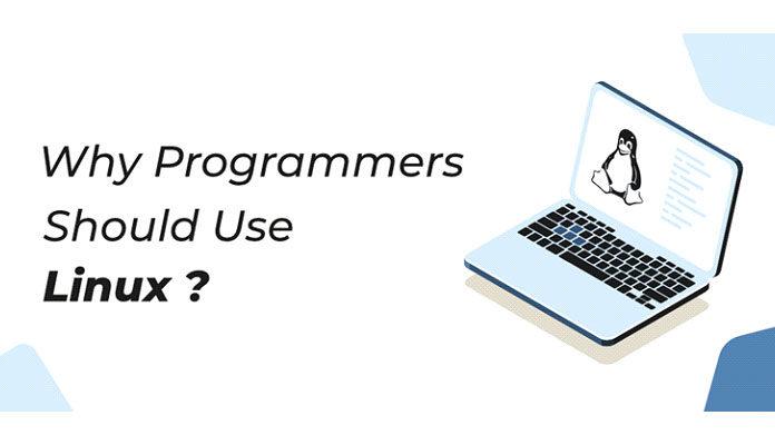 программистам следует использовать Linux